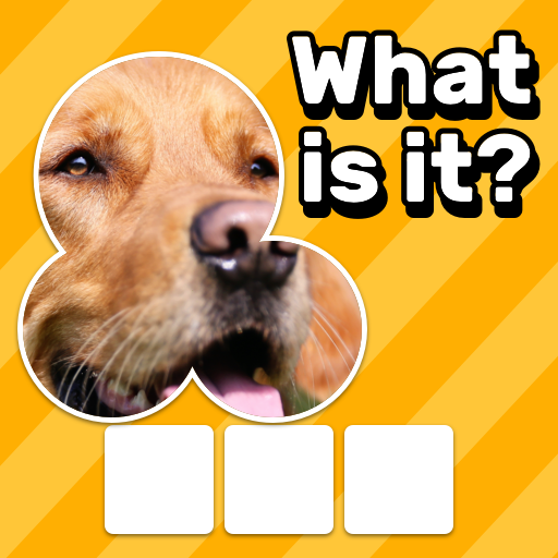 Zoom Quiz Close Up Pics Game, Guess the Word  3.5.3 APK MOD (Unlimited Money) Download